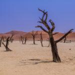 Sossusvlei - Photos Namibie